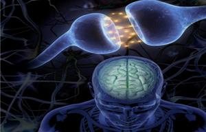 El informe pericial en psicología y psiquiatría forense: casos prácticos