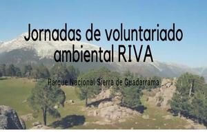 Jornadas de Voluntariado Ambiental RIVA