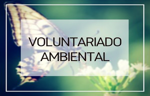 Voluntariado Ambiental